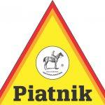 logo_piatnik | Games, Toys & More | Spielefachhandel in Linz